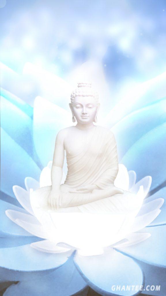 buddha mobile wallpaper hd